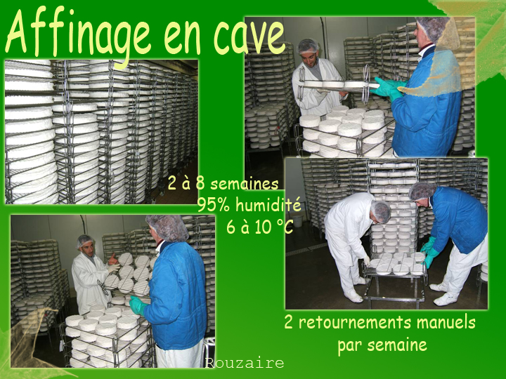 nos caves